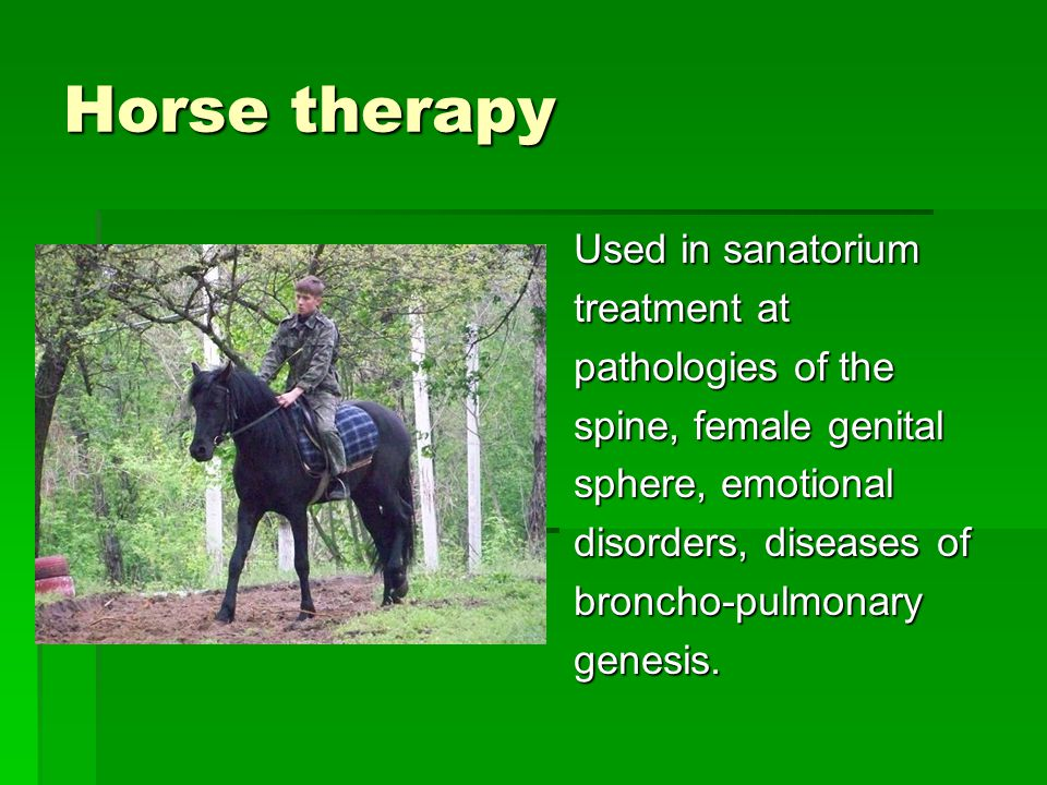 Horse therapy Used in sanatorium treatment at pathologies of the spine, female genital sphere, emotional disorders, diseases of broncho-pulmonarygenesis.