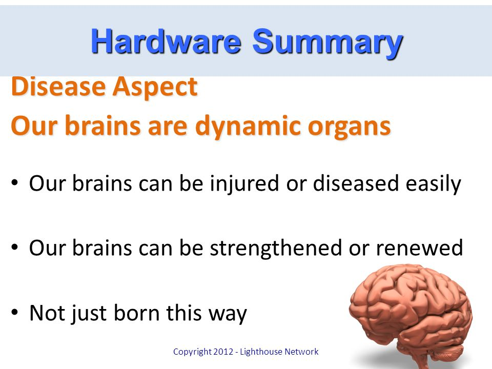 Hardware Summary Disease Aspect Our brains are dynamic organs Our brains can be injured or diseased easily Our brains can be strengthened or renewed N