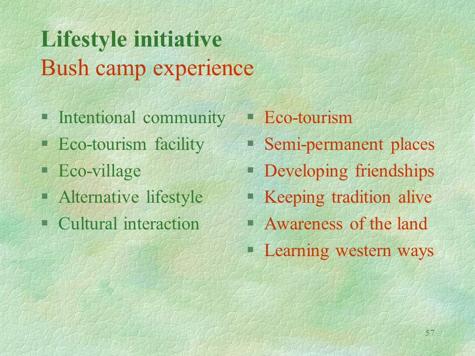 57 Lifestyle initiative Bush camp experience §Intentional community §Eco-tourism facility §Eco-village §Alternative lifestyle §Cultural interaction §E