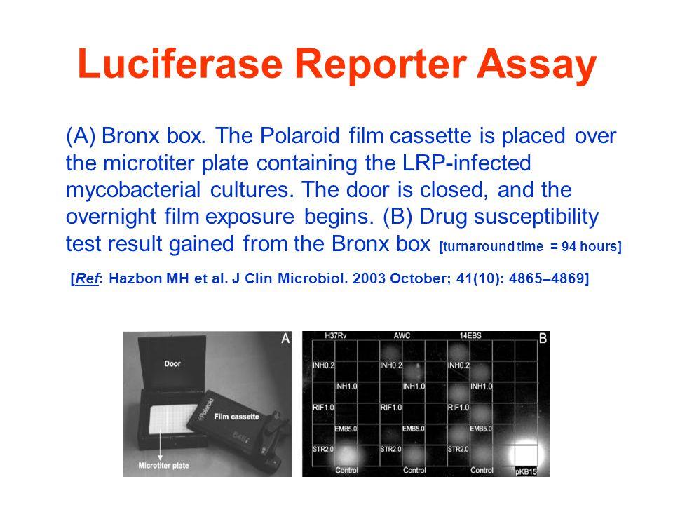 Luciferase Reporter Assay (A) Bronx box.