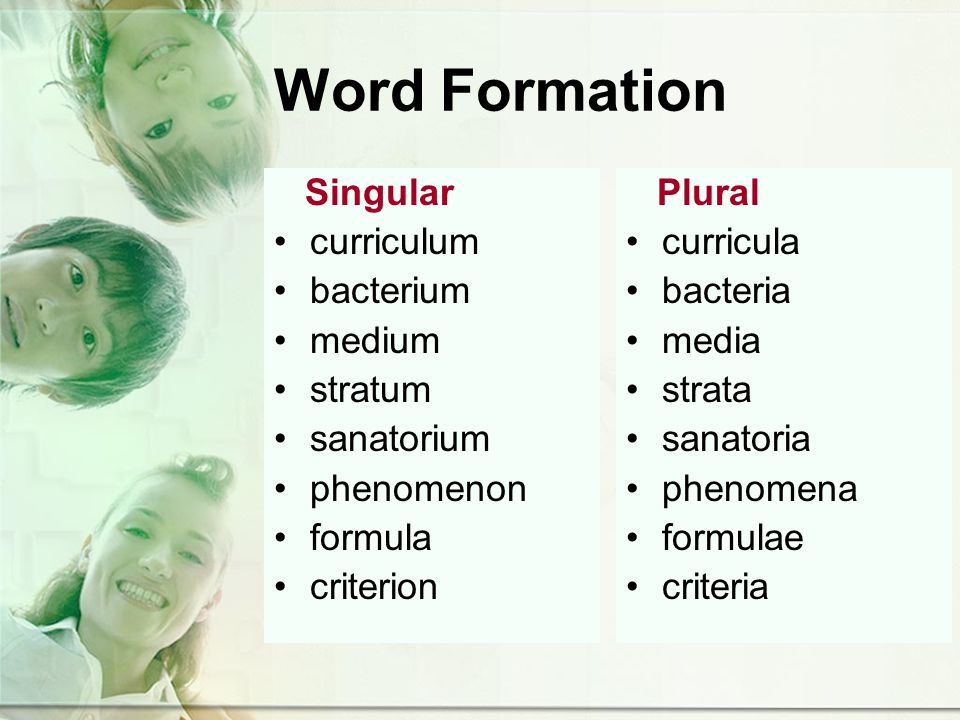 Word Formation Singular curriculum bacterium medium stratum sanatorium phenomenon formula criterion Plural curricula bacteria media strata sanatoria phenomena formulae criteria
