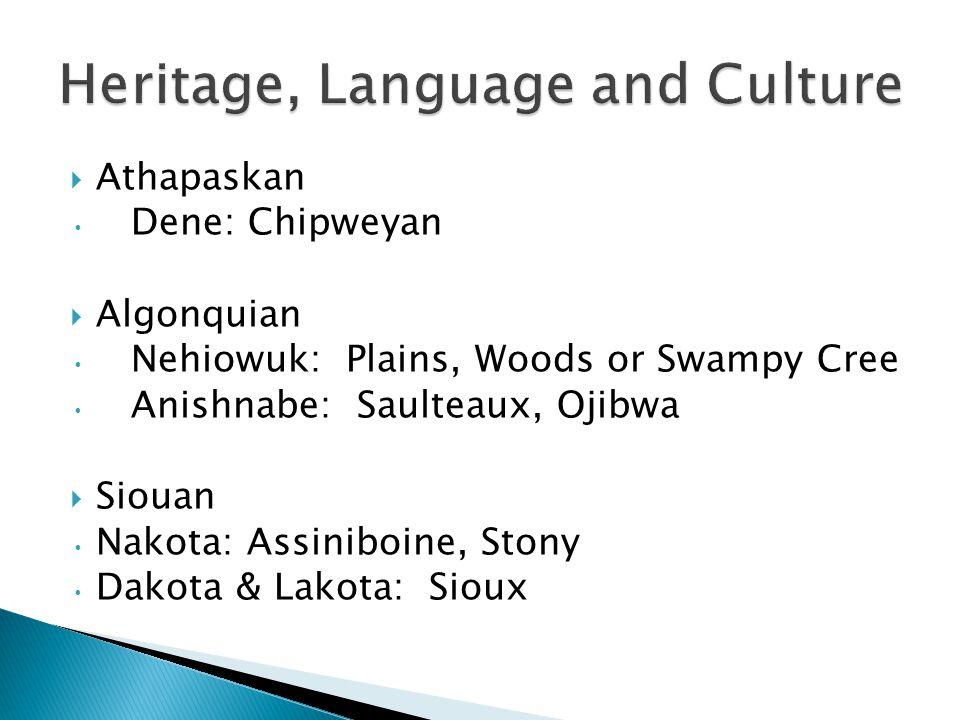 Athapaskan Dene: Chipweyan Algonquian Nehiowuk: Plains, Woods or Swampy Cree Anishnabe: Saulteaux, Ojibwa Siouan Nakota: Assiniboine, Stony Dakota & Lakota: Sioux