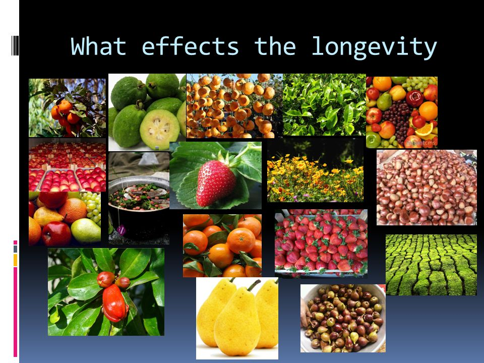 What effects the longevity