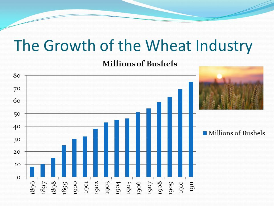 The Growth of the Wheat Industry