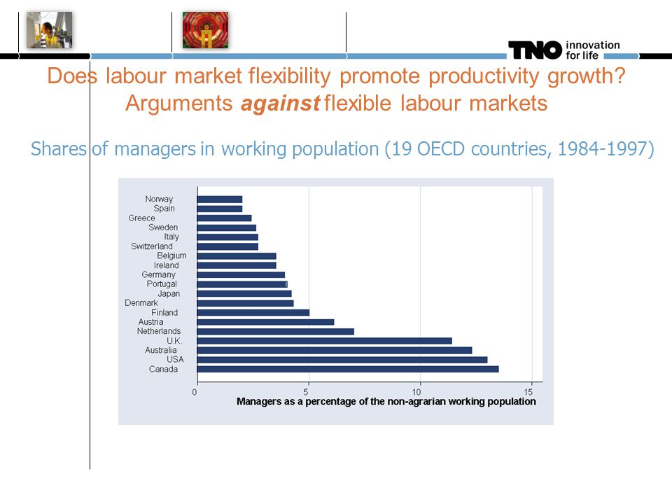 Shares of managers in working population (19 OECD countries, 1984-1997) Does labour market flexibility promote productivity growth? Arguments against
