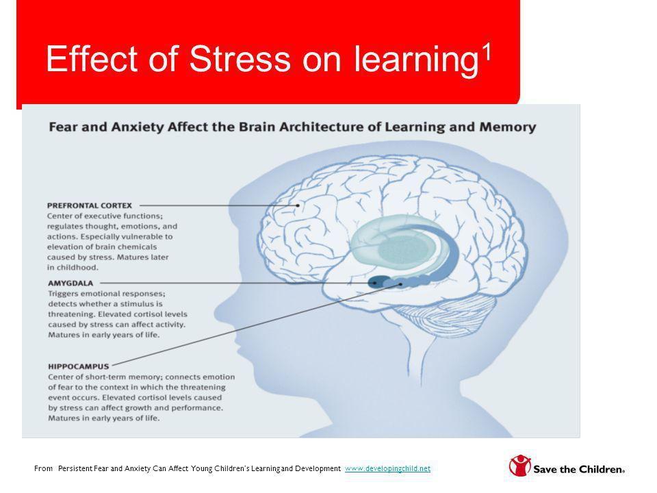 Effect of Stress on learning 1 From Persistent Fear and Anxiety Can Affect Young Childrens Learning and Development www.developingchild.netwww.develop