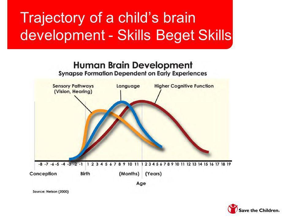 Trajectory of a childs brain development - Skills Beget Skills
