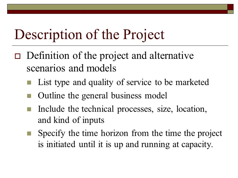 Description of the Project Definition of the project and alternative scenarios and models List type and quality of service to be marketed Outline the general business model Include the technical processes, size, location, and kind of inputs Specify the time horizon from the time the project is initiated until it is up and running at capacity.