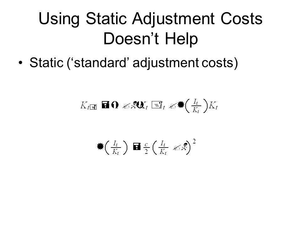 Using Static Adjustment Costs Doesnt Help Static (standard adjustment costs)