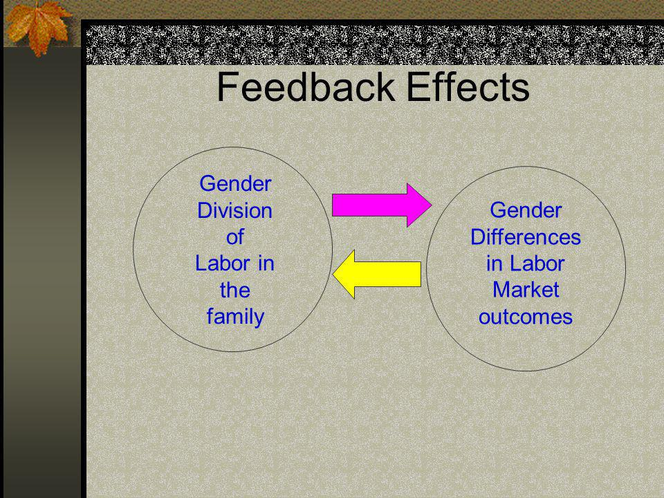 Feedback Effects Gender Division of Labor in the family Gender Differences in Labor Market outcomes