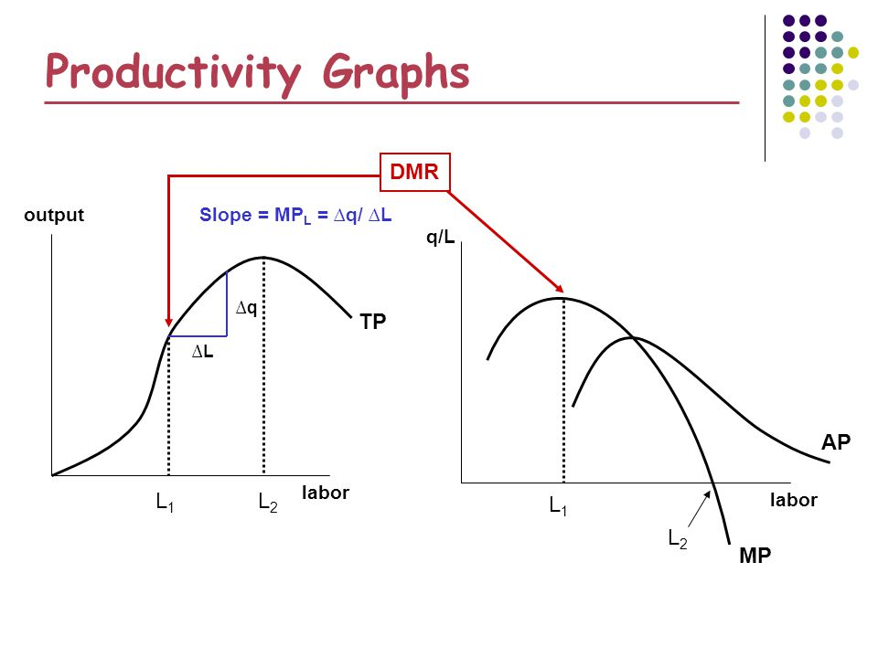 q L Productivity Graphs labor output labor q/L TP MP AP L1L1 L1L1 DMR L2L2 L2L2 Slope = MP L = q/ L