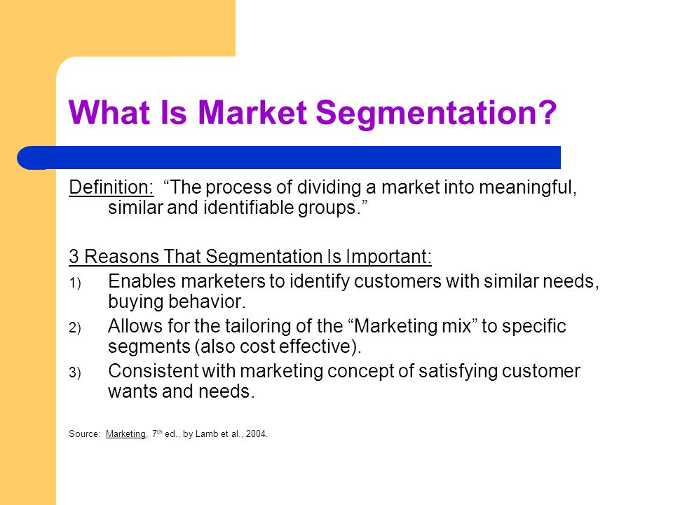 What Is Market Segmentation.