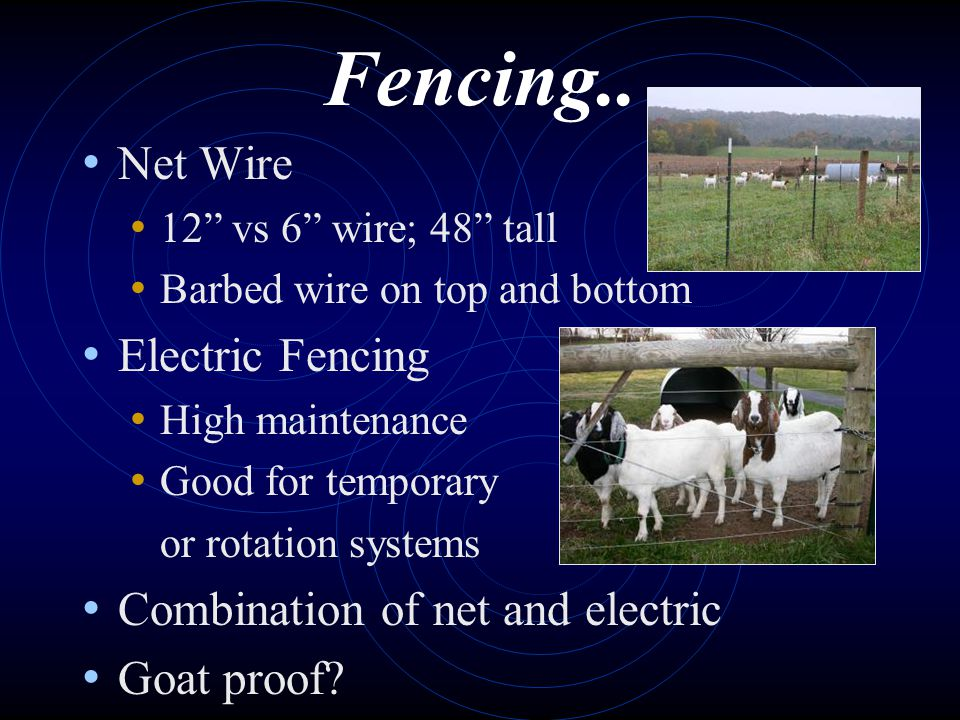 Fencing.. Net Wire 12 vs 6 wire; 48 tall Barbed wire on top and bottom Electric Fencing High maintenance Good for temporary or rotation systems Combin