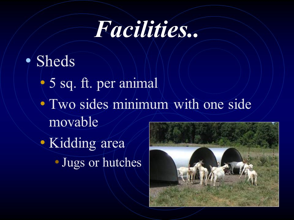 Facilities.. Sheds 5 sq. ft. per animal Two sides minimum with one side movable Kidding area Jugs or hutches
