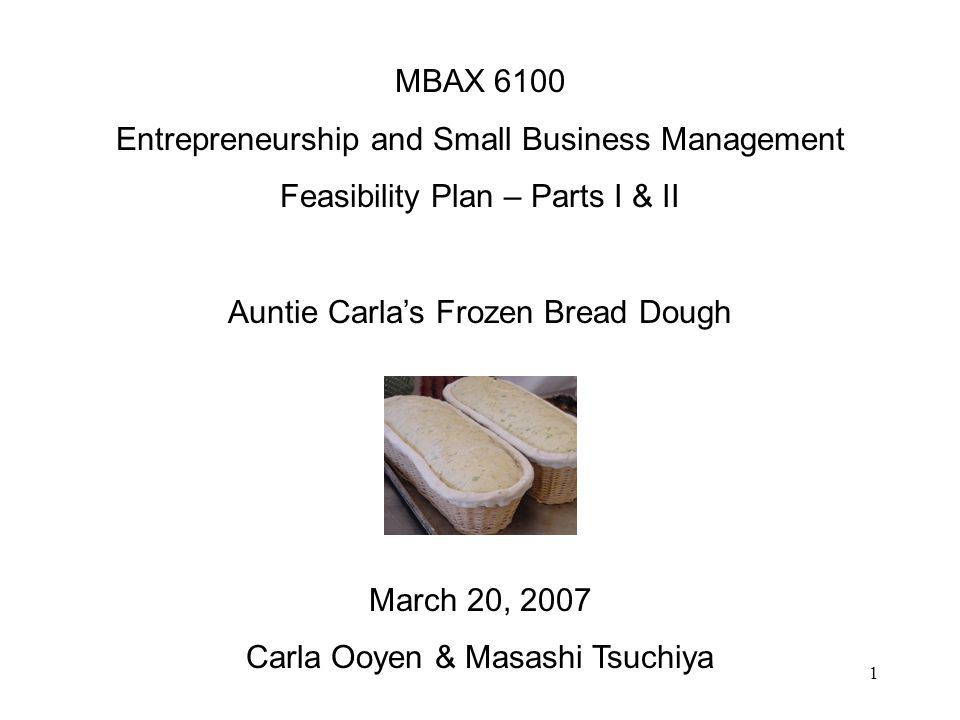 1 MBAX 6100 Entrepreneurship and Small Business Management Feasibility Plan – Parts I & II Auntie Carlas Frozen Bread Dough March 20, 2007 Carla Ooyen