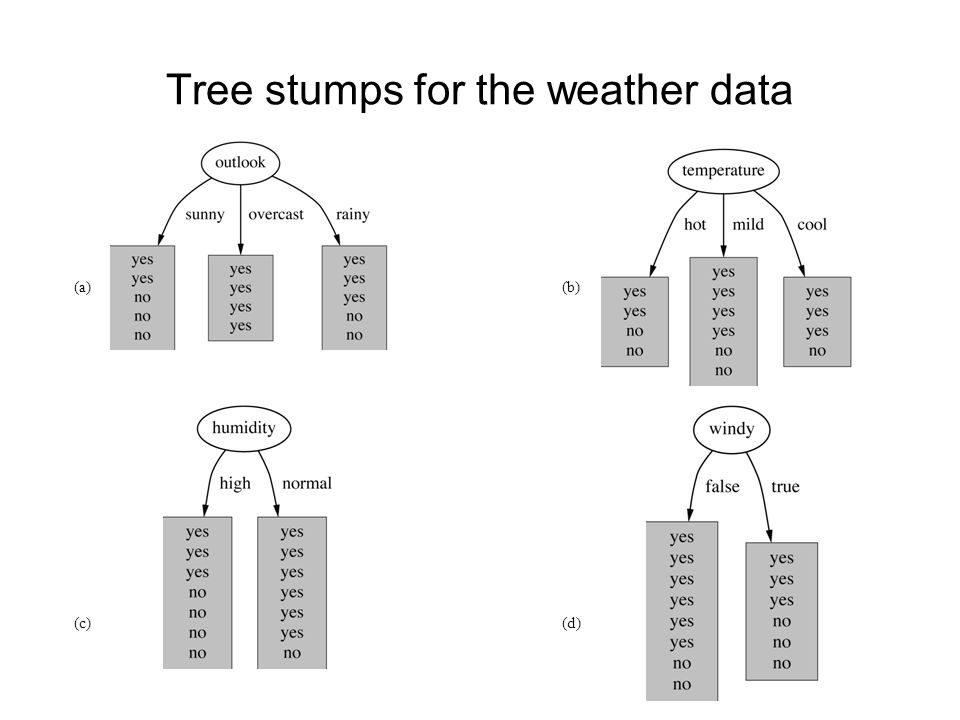 Tree stumps for the weather data (a)(b) (c)(d)