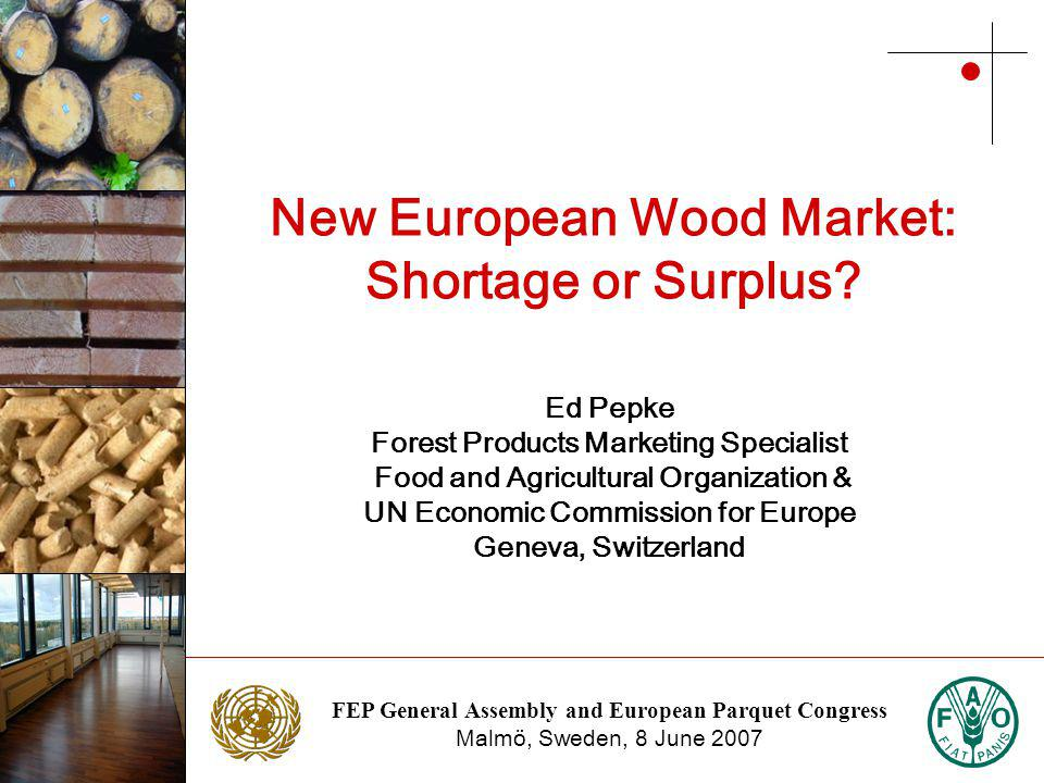 FEP General Assembly and European Parquet Congress Malmö, Sweden, 8 June 2007 Photo: NTC Photo: Stora Enso New European Wood Market: Shortage or Surplus.