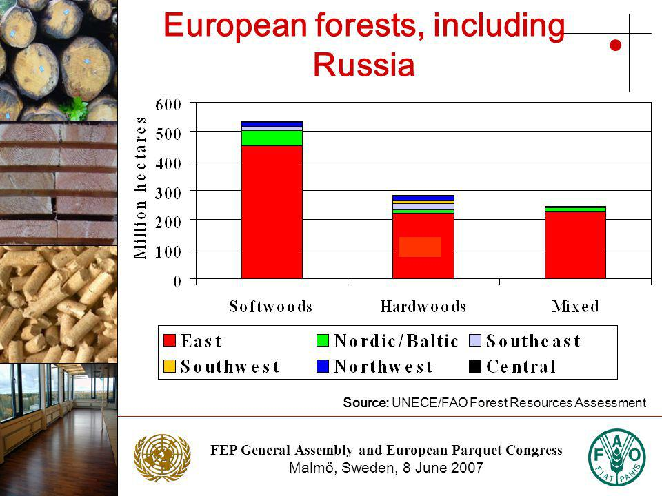FEP General Assembly and European Parquet Congress Malmö, Sweden, 8 June 2007 Photo: NTC Photo: Stora Enso European forests, including Russia Source: UNECE/FAO Forest Resources Assessment