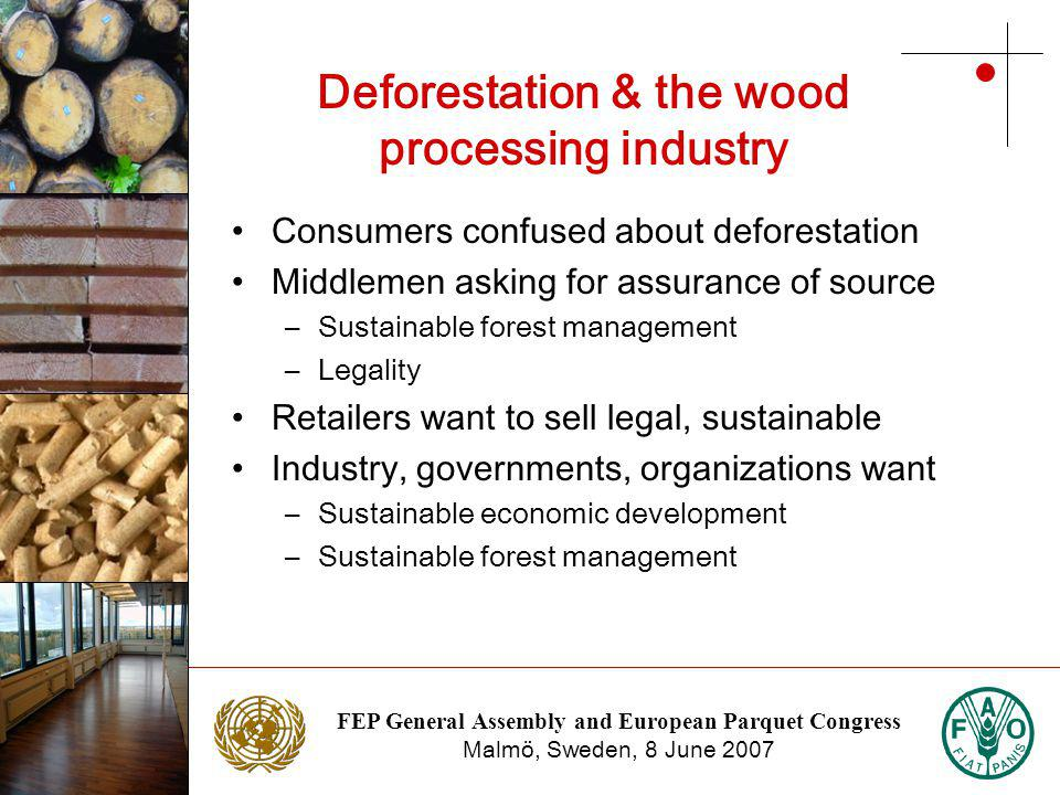 FEP General Assembly and European Parquet Congress Malmö, Sweden, 8 June 2007 Photo: NTC Photo: Stora Enso Deforestation & the wood processing industry Consumers confused about deforestation Middlemen asking for assurance of source –Sustainable forest management –Legality Retailers want to sell legal, sustainable Industry, governments, organizations want –Sustainable economic development –Sustainable forest management