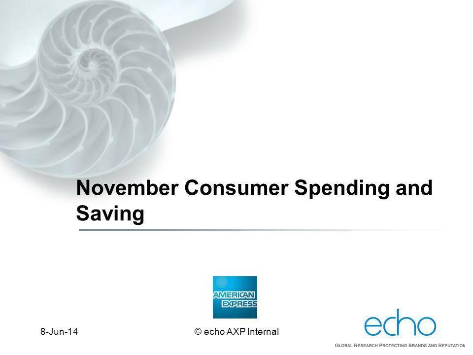 November Consumer Spending and Saving © echo AXP Internal8-Jun-14