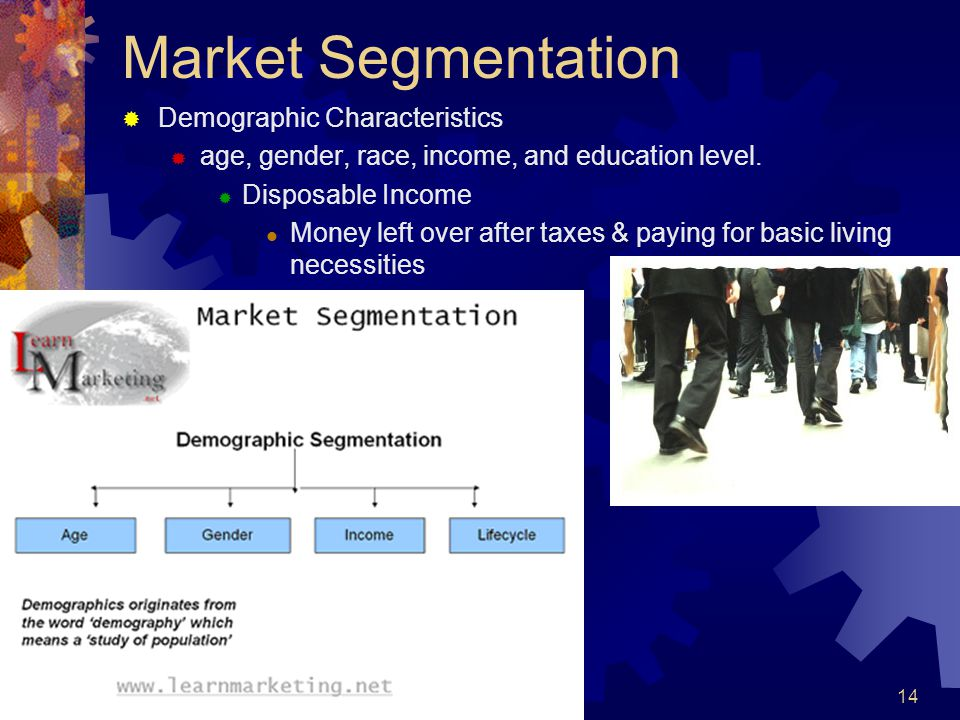 Market Segmentation Demographic Characteristics age, gender, race, income, and education level. Disposable Income Money left over after taxes & paying