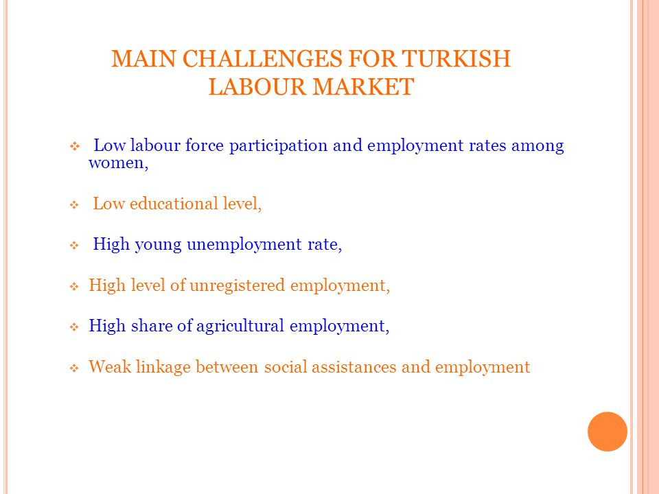 MAIN CHALLENGES FOR TURKISH LABOUR MARKET Low labour force participation and employment rates among women, Low educational level, High young unemployment rate, High level of unregistered employment, High share of agricultural employment, Weak linkage between social assistances and employment 16