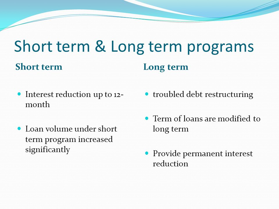 Short term & Long term programs Short term Long term Interest reduction up to 12- month Loan volume under short term program increased significantly t