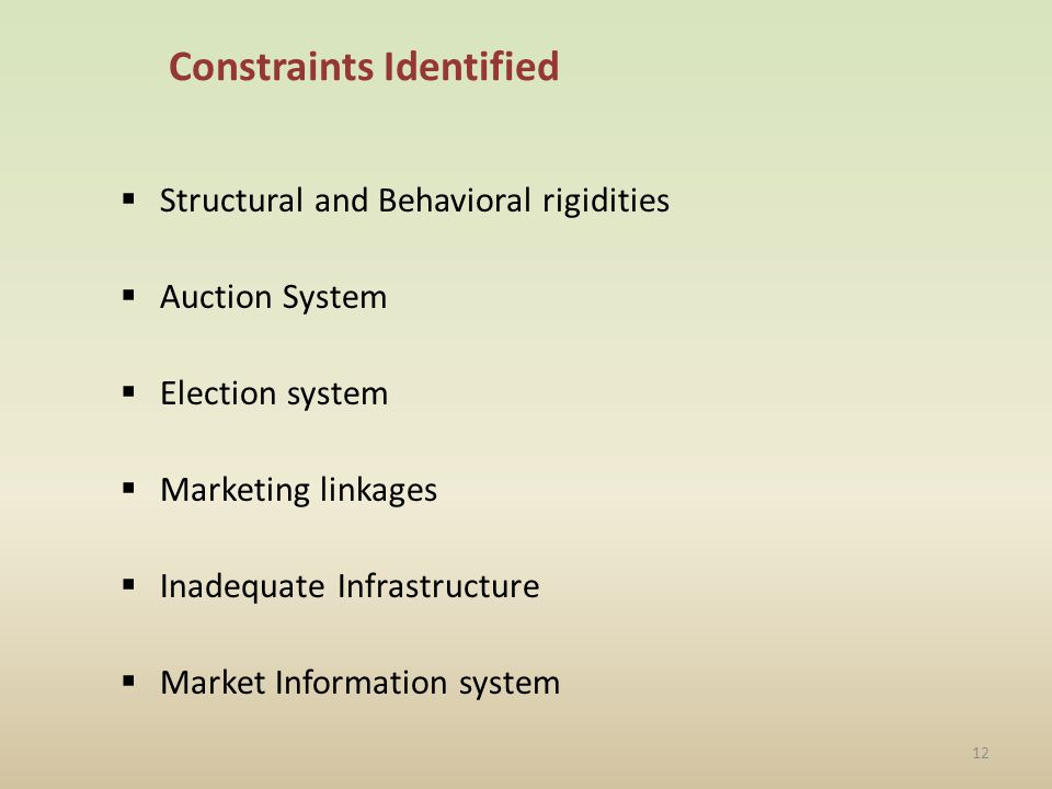Constraints Identified Structural and Behavioral rigidities Auction System Election system Marketing linkages Inadequate Infrastructure Market Information system 12