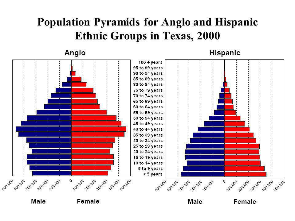 Population Pyramids for Anglo and Hispanic Ethnic Groups in Texas, 2000 Male Female AngloHispanic