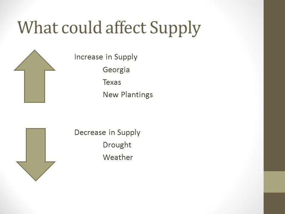 What could affect Supply Increase in Supply Georgia Texas New Plantings Decrease in Supply Drought Weather