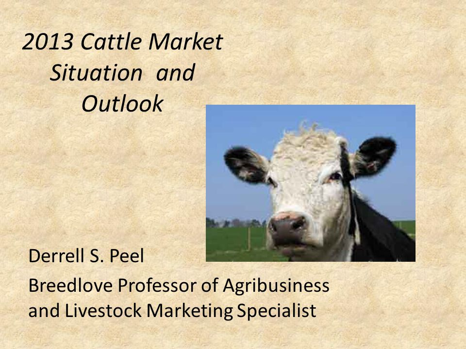2013 Cattle Market Situation and Outlook Derrell S.