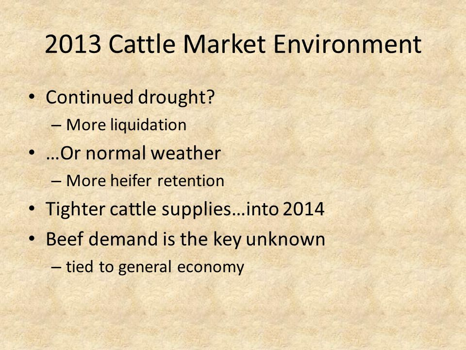 2013 Cattle Market Environment Continued drought.
