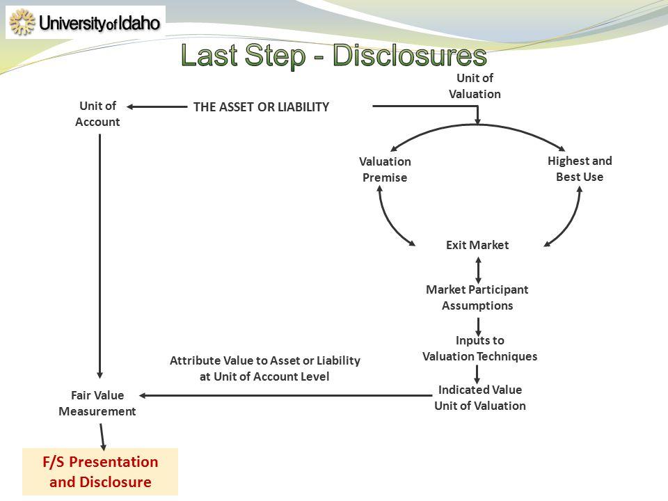 Fair Value Measurement F/S Presentation and Disclosure THE ASSET OR LIABILITY Indicated Value Unit of Valuation Market Participant Assumptions Inputs