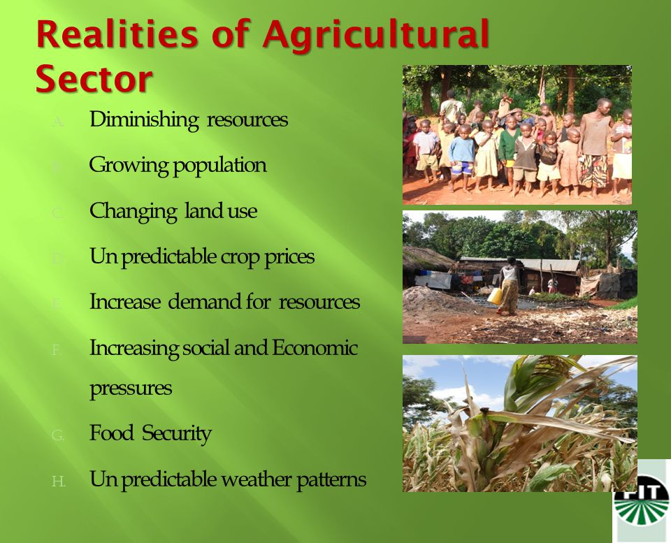 Realities of Agricultural Sector A. Diminishing resources B.