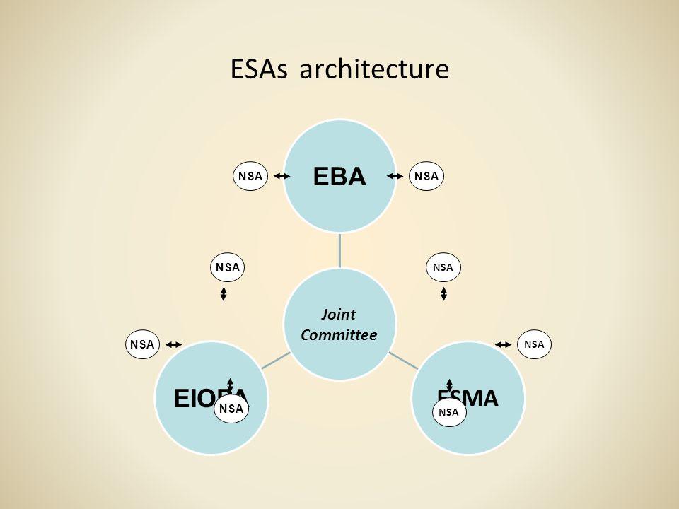 ESAs architecture NSA
