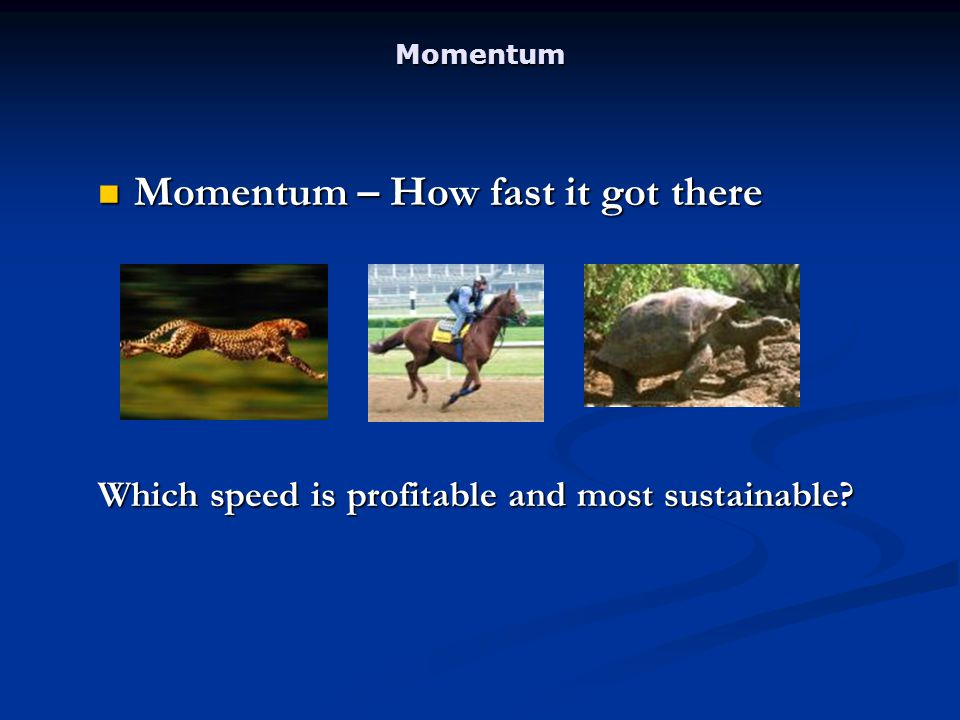 Momentum Momentum – How fast it got there Momentum – How fast it got there Which speed is profitable and most sustainable