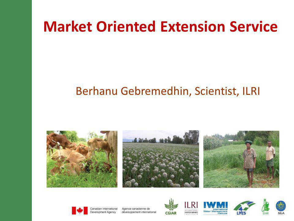 Market Oriented Extension Service Berhanu Gebremedhin, Scientist, ILRI