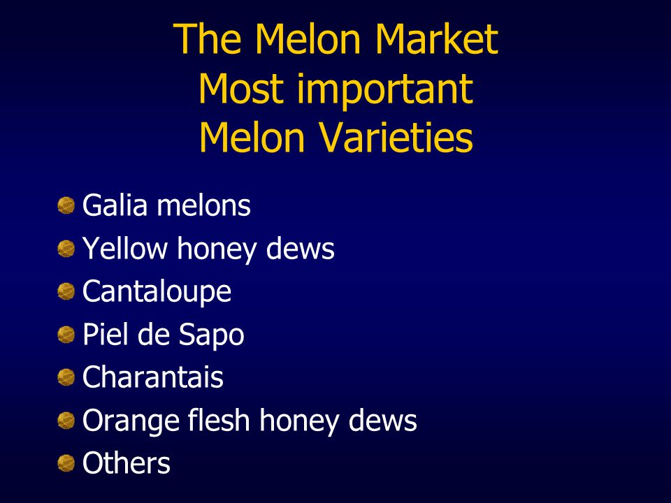 The Melon Market Most important Melon Varieties Galia melons Yellow honey dews Cantaloupe Piel de Sapo Charantais Orange flesh honey dews Others