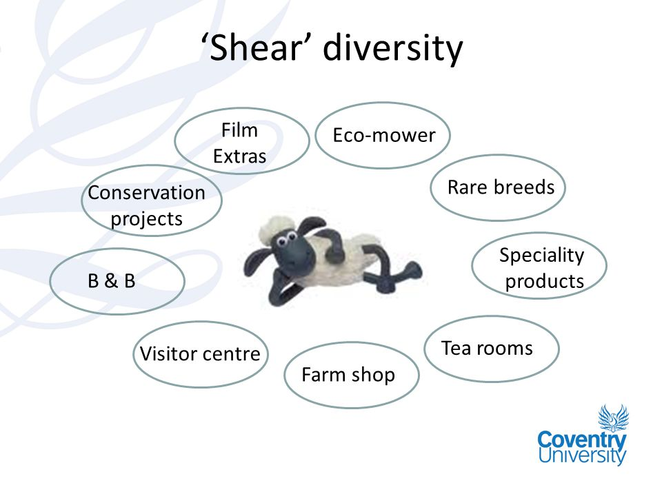 Shear diversity Farm shop Rare breeds Visitor centre Conservation projects Speciality products B & B Eco-mower Tea rooms Film Extras