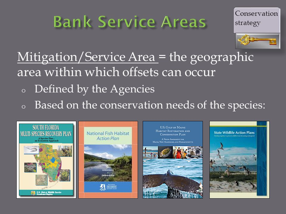 Mitigation/Service Area = the geographic area within which offsets can occur o Defined by the Agencies o Based on the conservation needs of the species: Conservation strategy