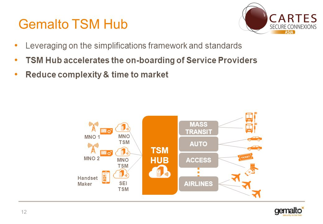 12 TSM HUB MNO 1 MASS TRANSIT ACCESS AIRLINES Handset Maker MNO 2 SEI TSM MNO TSM AUTO MNO TSM Leveraging on the simplifications framework and standar