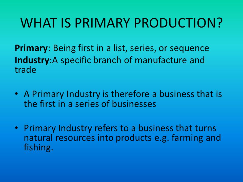 WHAT IS PRIMARY PRODUCTION.