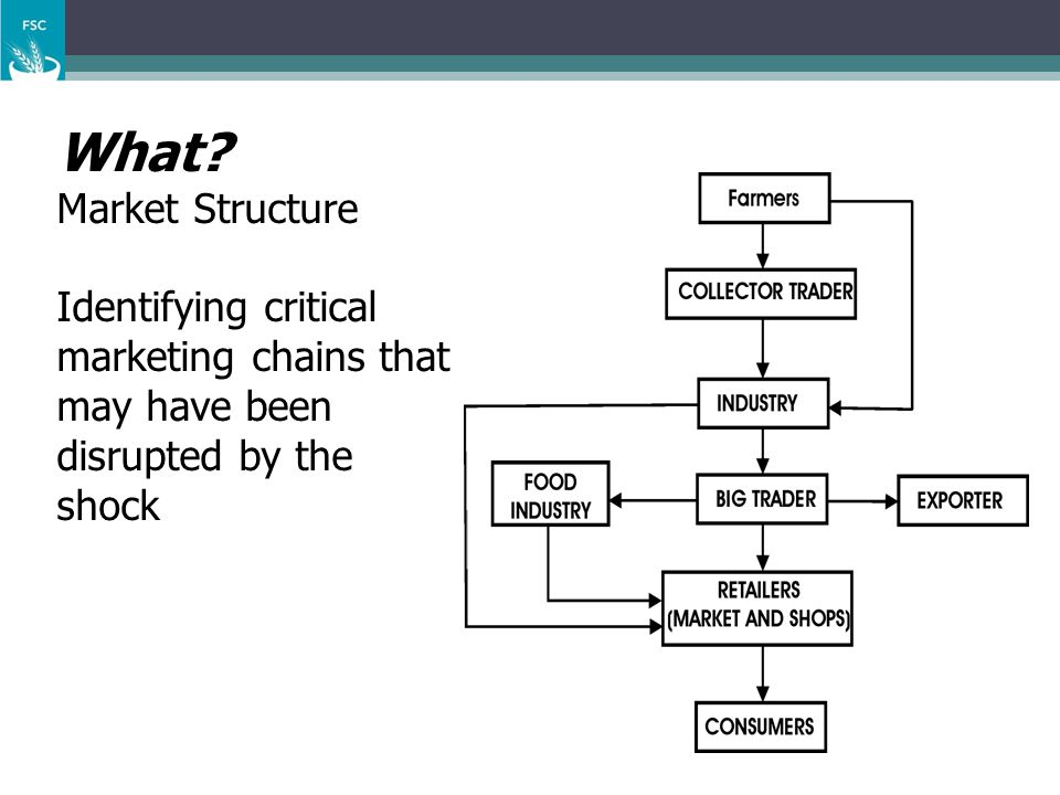 What? Market Structure Identifying critical marketing chains that may have been disrupted by the shock
