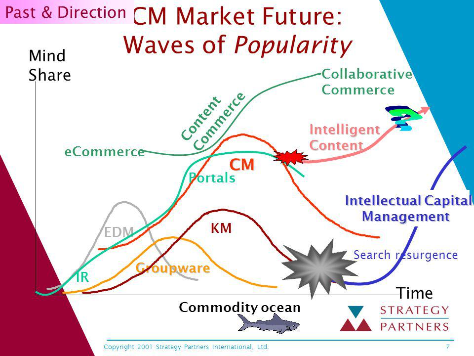Copyright 2001 Strategy Partners International, Ltd.7 CM Market Future: Waves of Popularity EDM Groupware KM CM Mind Share Time Commodity ocean Portal
