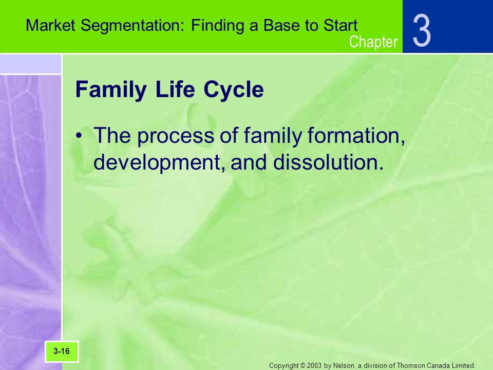 Chapter Copyright © 2003 by Nelson, a division of Thomson Canada Limited. Family Life Cycle The process of family formation, development, and dissolut