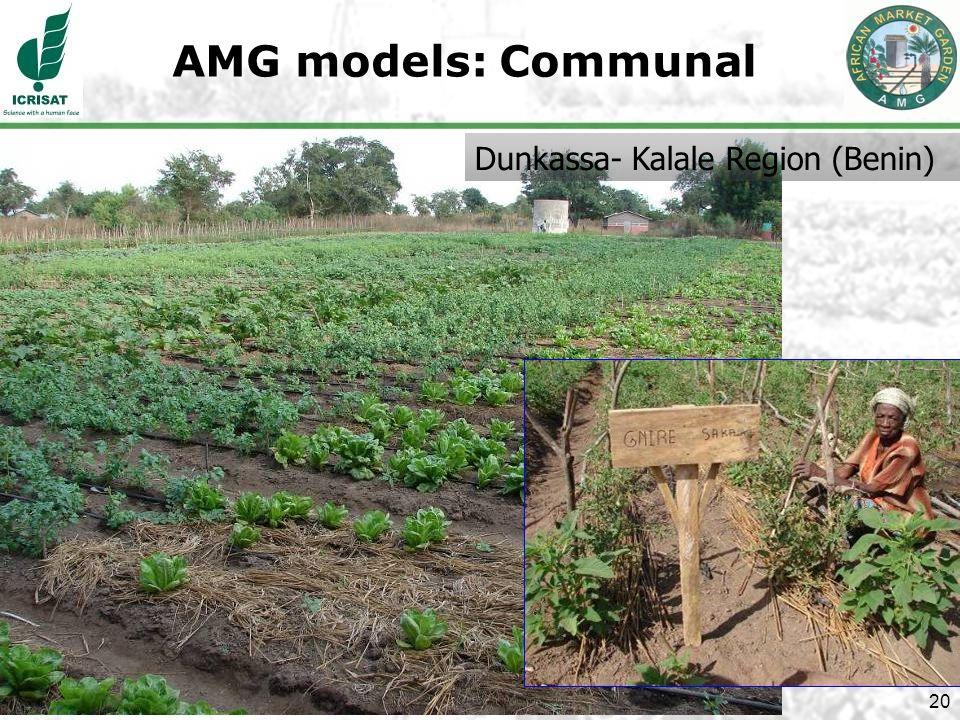 20 AMG models: Communal Dunkassa- Kalale Region (Benin)