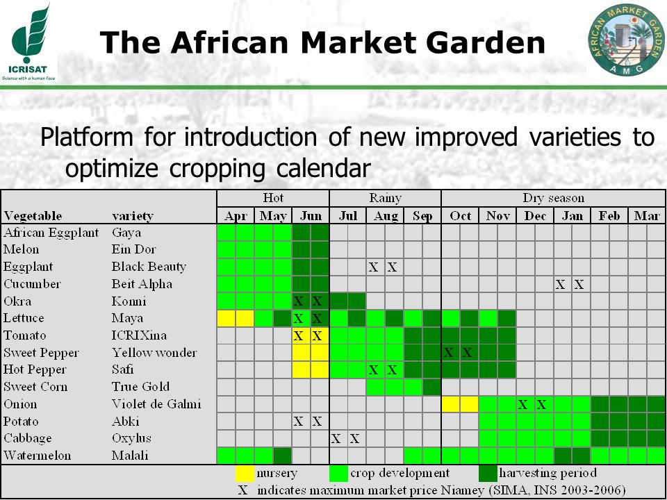 6 Platform for introduction of new improved varieties to optimize cropping calendar