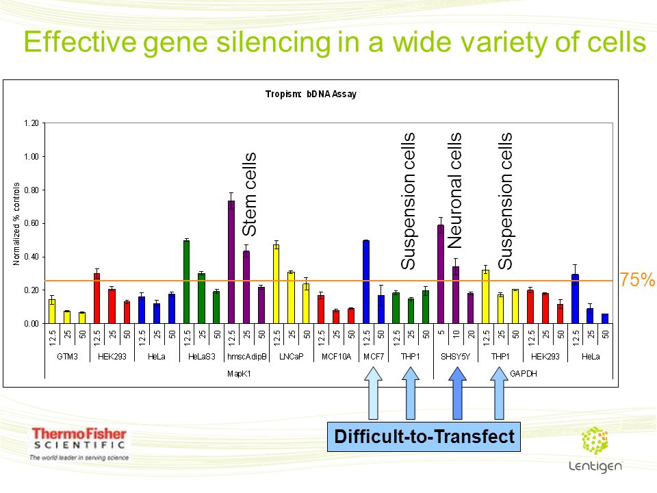 Effective gene silencing in a wide variety of cells 75% Difficult-to-Transfect Stem cells Suspension cells Neuronal cells Suspension cells