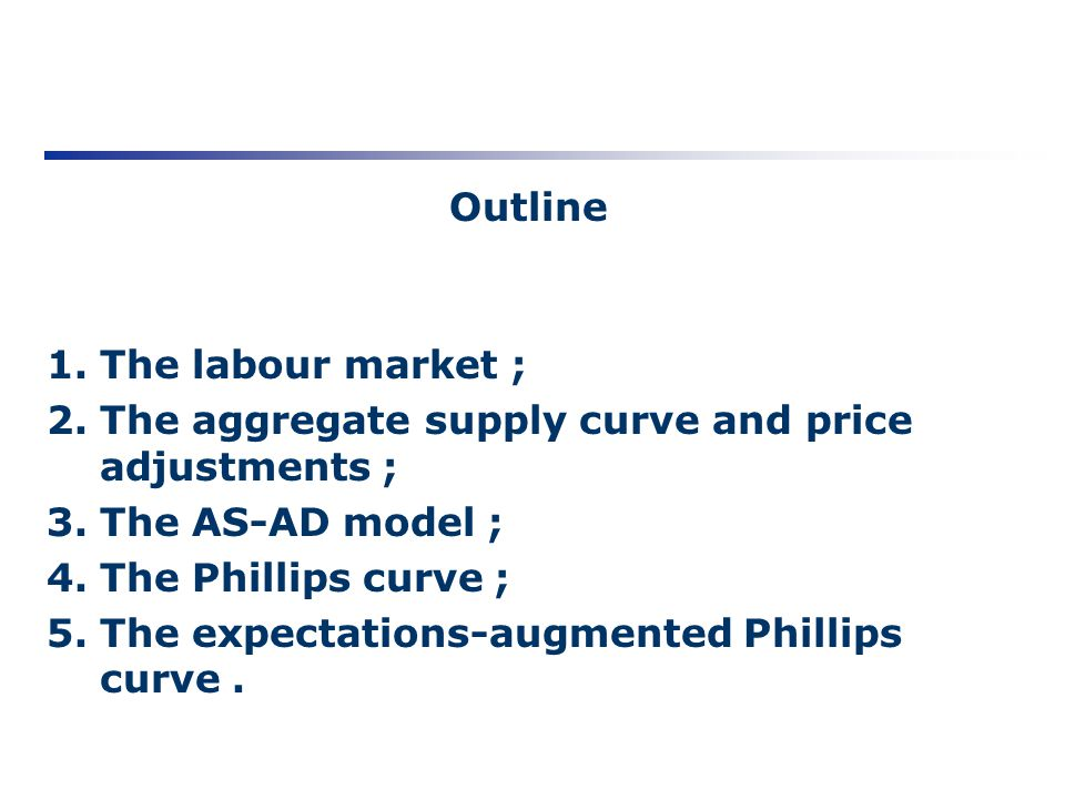 Outline 1.The labour market ; 2.The aggregate supply curve and price adjustments ; 3.The AS-AD model ; 4.The Phillips curve ; 5.The expectations-augme