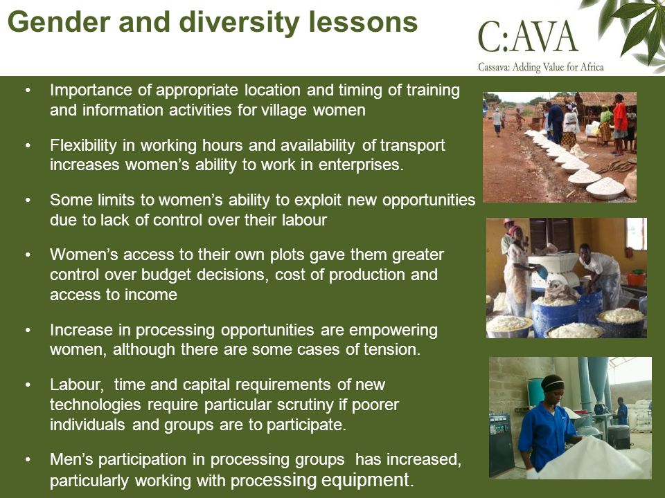 Gender and diversity lessons Importance of appropriate location and timing of training and information activities for village women Flexibility in working hours and availability of transport increases womens ability to work in enterprises.